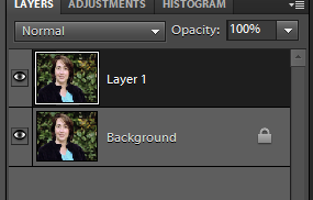 How to use the liquify tool in Photoshop Elements to make a