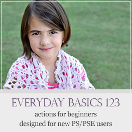 Everyday Basics action set for Photoshop and Photoshop Elements beginners