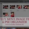Safely Move Image Files with PSE Organizer