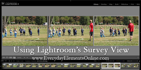 Using the Survey View in Lightroom 4