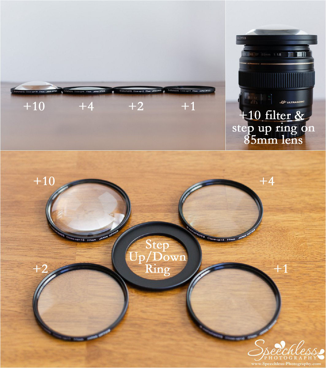 Macro Filter Set, +10 filter on Canon 85mm f/1.8 lens