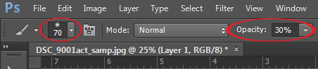 brush size and opacity PS cs6