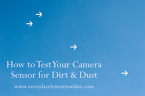 How to test your camera sensor for dirt and dust www.everydayelementsonline.com