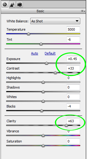 changes in ACR basic panel to define dirt and dust on sensor