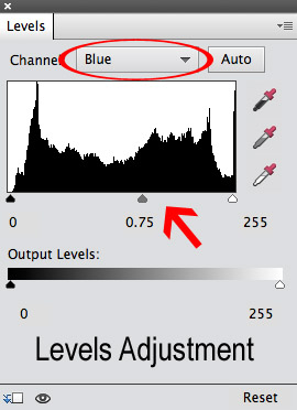 levels adjustment layer in photoshop elements