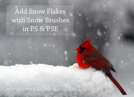 Add snow with snow brushes