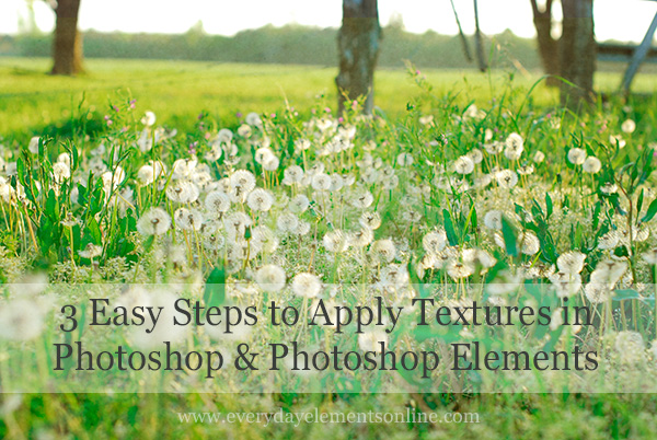3 Easy Steps to Apply Textures in Photoshop and PSE